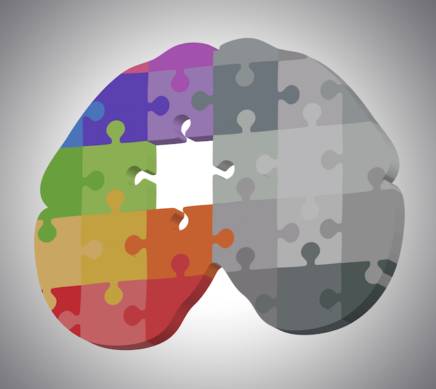 Neuroplasticity - building the puzzle of the brain